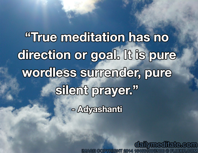 True Meditation Has No Direction Or Goal It Is Pure Wordless Best Adyashanti Quotes