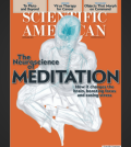 Meditation Covers Scientific American November 2014 Issue