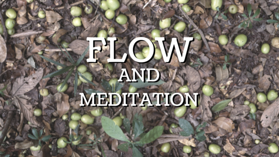 Flow And Meditation
